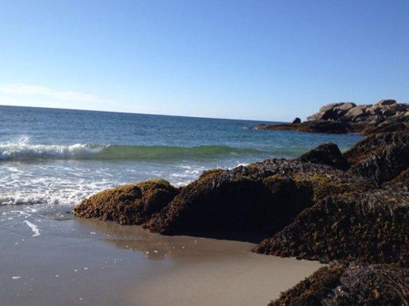 gloucester-shore