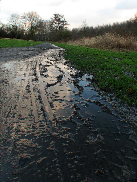 muddy-path